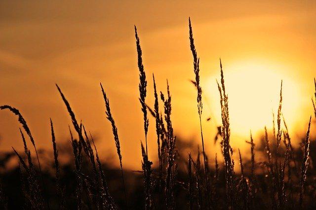 východ Slunce – první paprsky.jpg